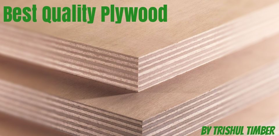 identify best quality plywood